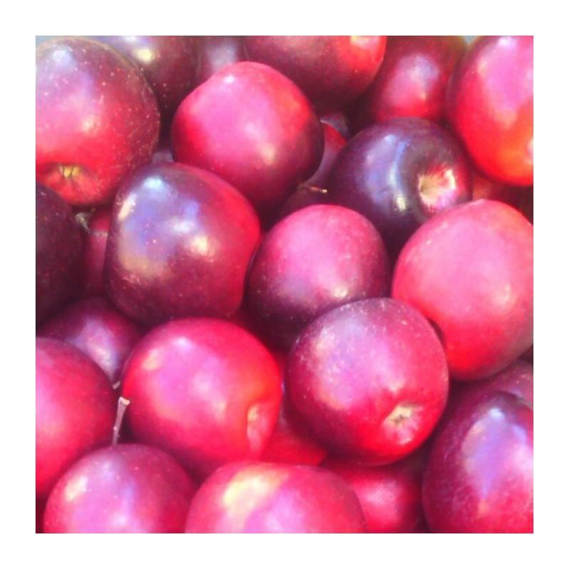 Muesli de Avena Sin Gluten con frutas