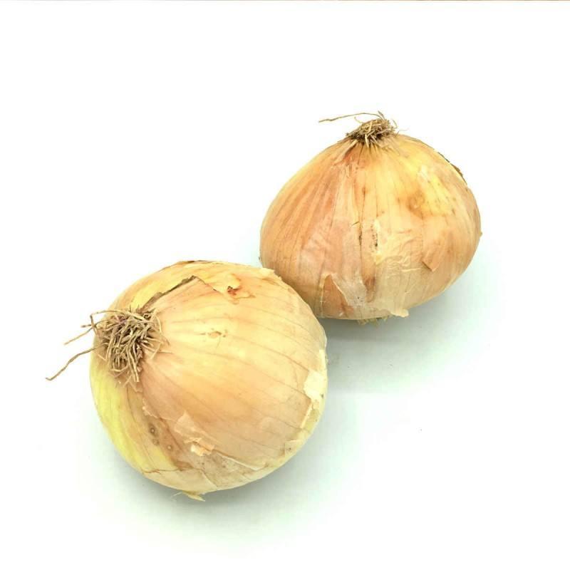 Cebolla Seca