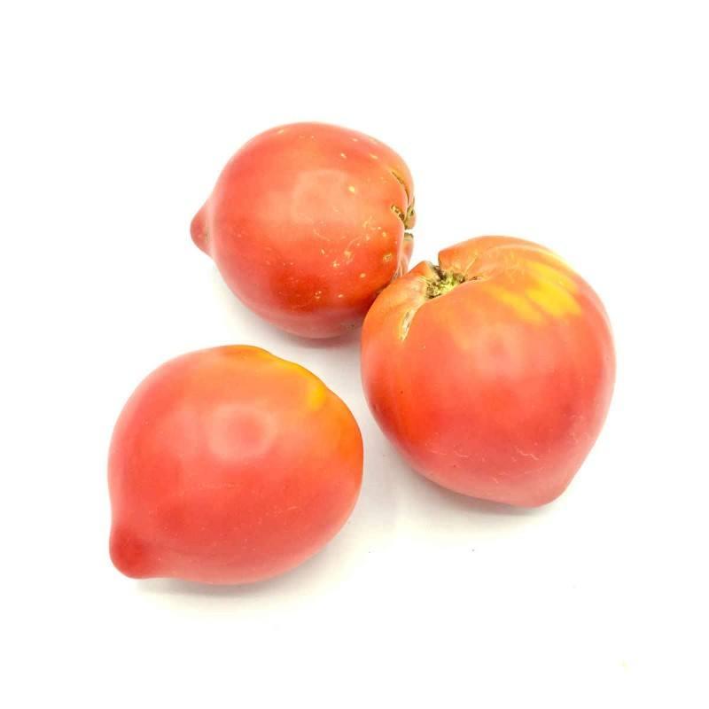 "Tomate ""Cor de Bou"""